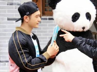 《熊猫奇缘》开播 伟大母爱令人敬畏