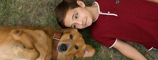 """《一条狗的使命》曝""""四条腿的大明星""""特辑"""