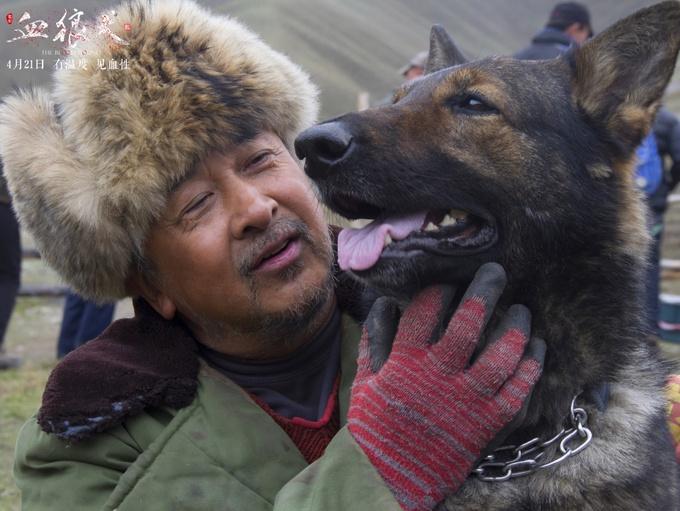 动物题材电影《血狼犬》将于4月21日上映
