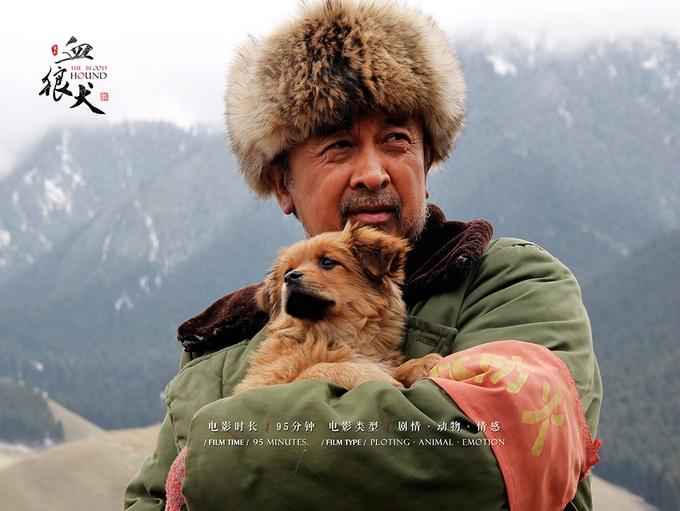 电影《血狼犬》上线一周全网点击量破亿