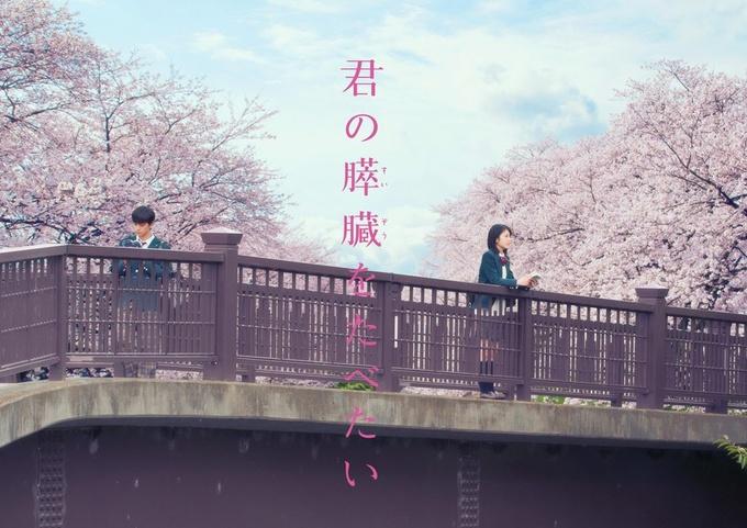 日本电影《我想吃掉你的胰脏》口碑超越你的名字