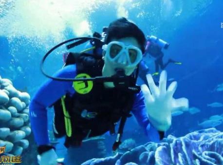 《极速前进4》主持人强子潜水与鱼共舞