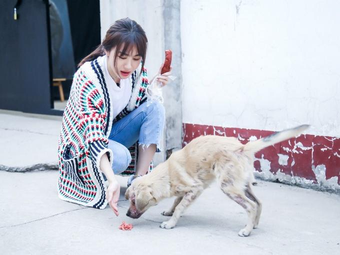 《生活相对论》热播 李菲儿悉心照顾小动物