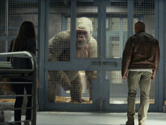 电影《狂暴巨兽》新预告巨石巨猩决裂