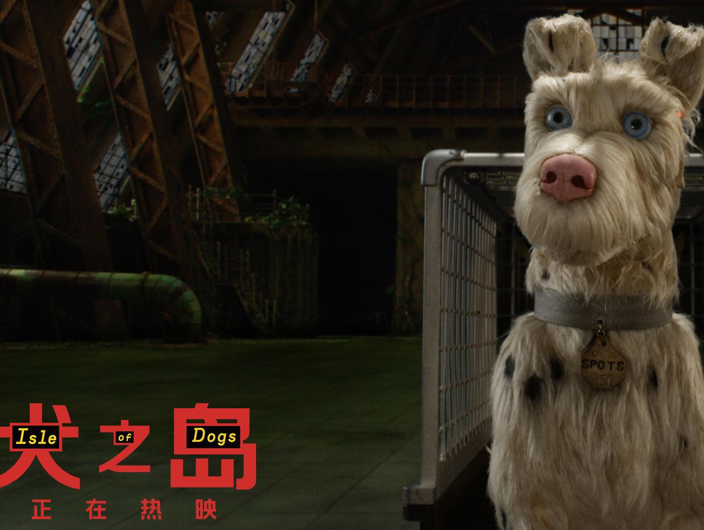 流浪狗遭遇现实版《犬之岛》正在热映