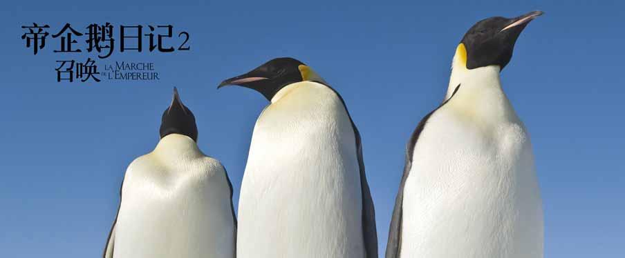 经典纪录片《帝企鹅日记2》即将上映