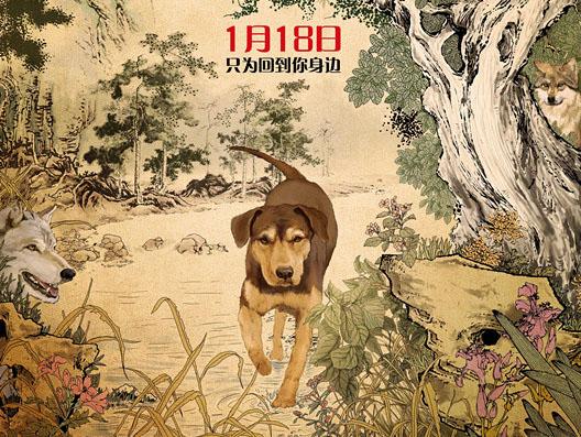 《一条狗的回家路》首映获好评中国风海报曝光