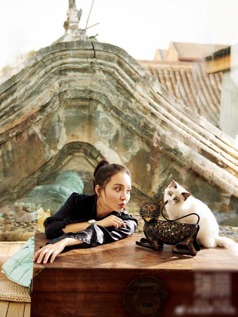 孙茜杂志大片温婉柔和 与猫咪同框超暖心