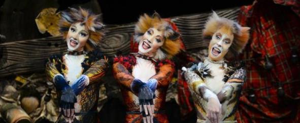世界经典原版音乐剧《猫》即将来杭演出