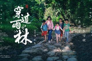 电影《穿过雨林》电影原声音乐温情上线